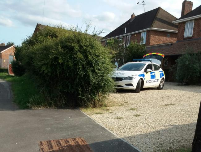 Forensics search after woman's body found