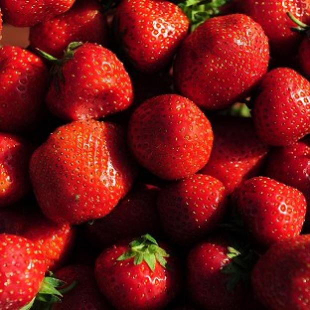 A warm March and cool April have delivered 'sweet and flavourful' strawberries, growers said