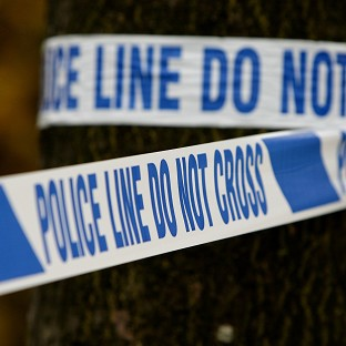 Police have arrested a man over the stabbing of a widower in Brighton