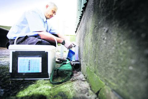 Pest Controller Rob Eckton is seeing increasing numbers of rat problems in the county
