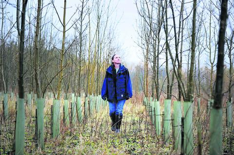 Forestry research manager Jo Clark of the Earth Trust at the organisation's Paradise Wood in Long Wittenham