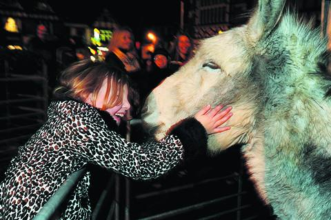 Nine-year-old Zara Croft with Monty from the Island Farm Donkey Sanctuary     Pictures: OX56131 Jon Lewis