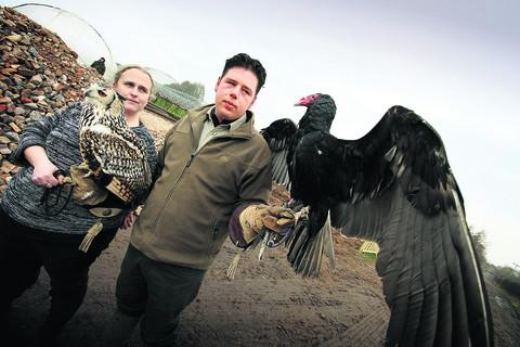 James and Sharon Channon with Indian Eagle Owl, Sahara and Turkey Vulture, Reggie. Picture: OX57286 Damian Halliwell