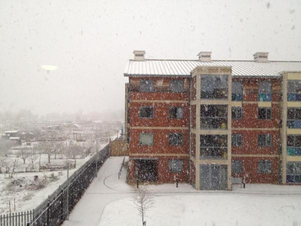 Readers' pictures: Oxfordshire wakes to surprisingly heavy snowfall