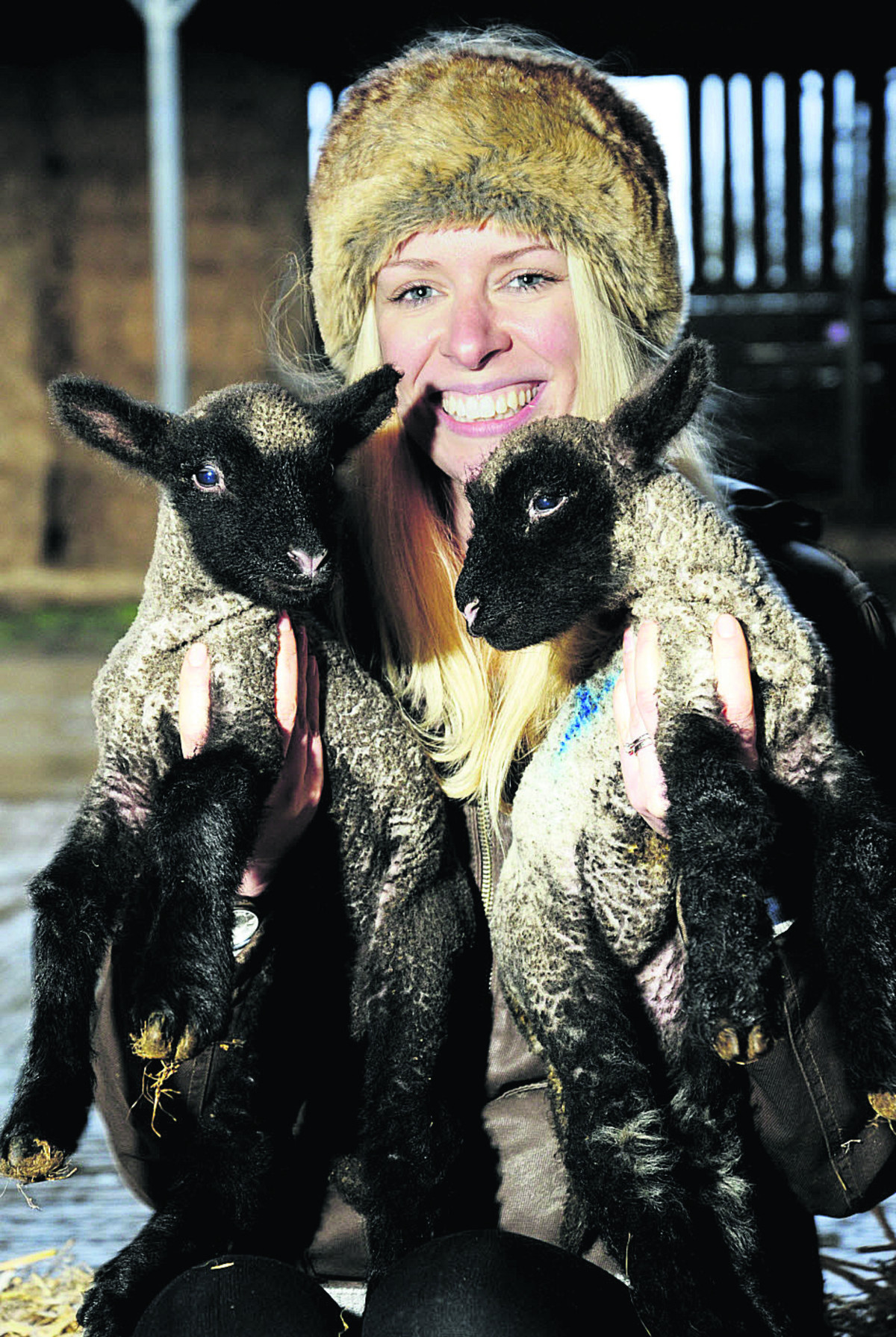 New tenant farmer Lauren Marriott, 28, holds a pair of newborn lambs. Picture: OX64658 David Fleming