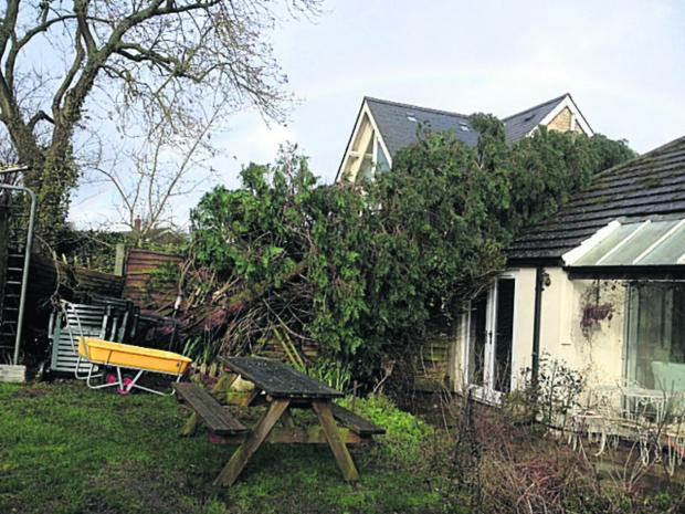 A tree came down on Julia Cox's Steeple Aston house