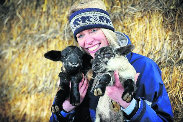 Lauren Marriott with 48-hour-old Lleyn lambs
