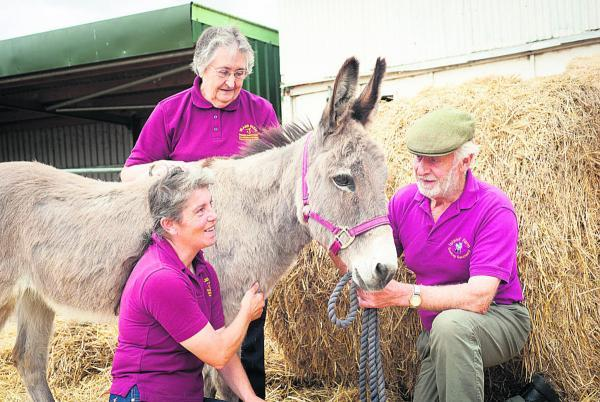 Stable manager Linda Chilton, chairwoman of trustees Judy Gibbons and the founder and manager of the sanctuary John McLaren with Tracey the donkey