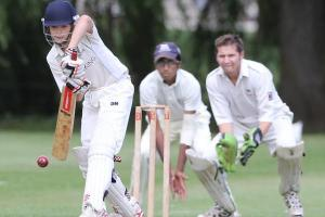 CRICKET: Vale remain in danger