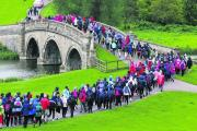 STEPPING OUT: Walkers set off for 10 mile Pink Ribbon Walk at Blenheim Palace in May