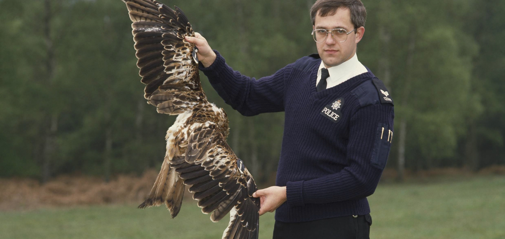 An RSPCA officer holds up a dead red kite