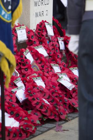Herald Series: Click here for pictures of Remembrance Day services around the county