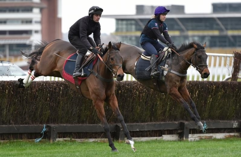 FULL FLOW: Coneygree (nearest camera) and Flintham during last week's schooling session at Newbury