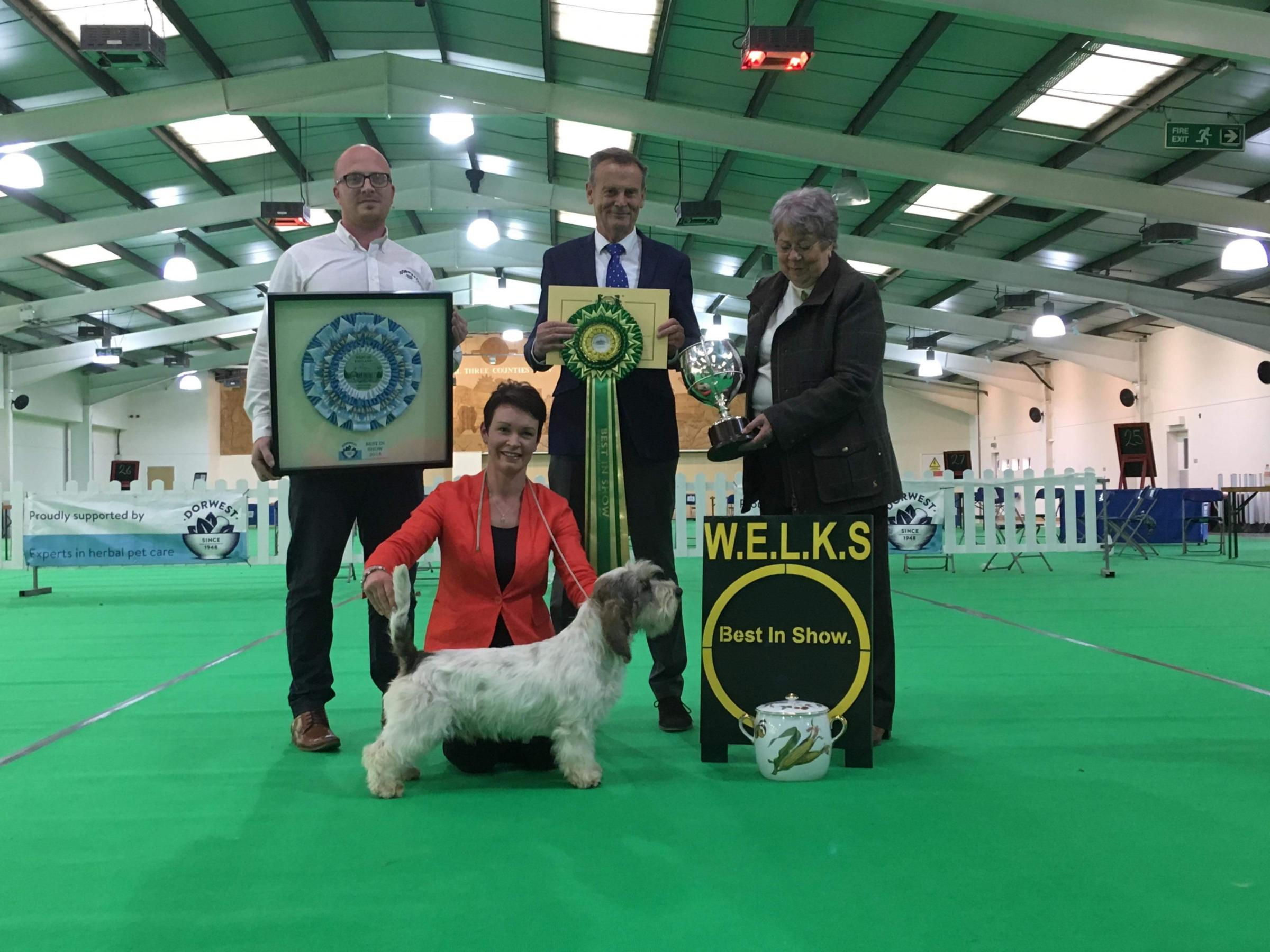 TOP DOG: Petit Basset Griffon Vendéen Magic Mike, Best in Show winner in Malvern, with Wallingford owner Sara Robertson (bottom) and judge Hans van den Berg (centre).