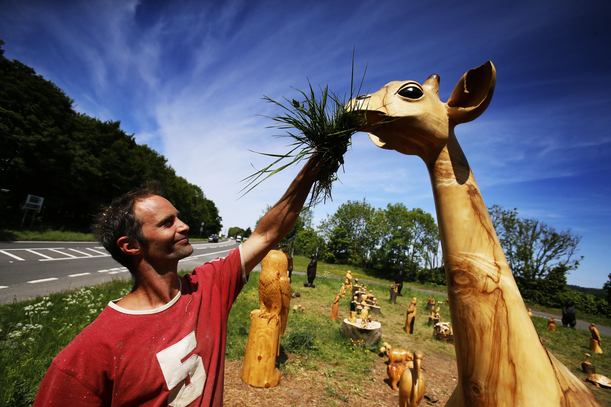 Wood Sculptor Bryn Askham and Co with his brilliant work by the side of the A420 at Bessels Leigh. Bryn is the one posed feeding his giant wooden giraffe.17.5.2018Picture by Ed Nix
