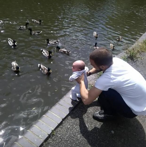 Herald Series: A young Isla-Rose meets some ducks with Dad Danny